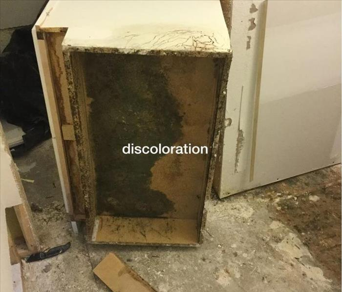 Mold Remediation Mold Remediation Under Bathroom Cabinets